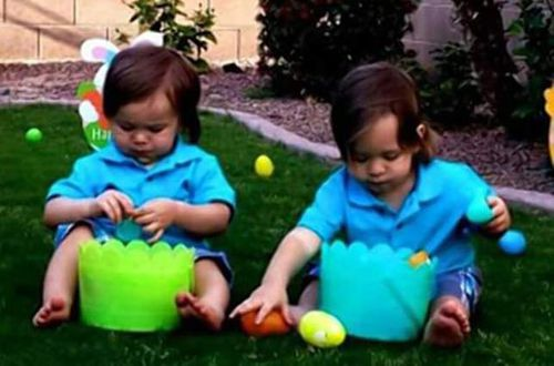 Twin toddlers drown after their mother tried to swat a bee