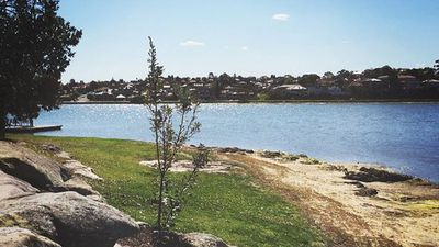 In Rodd Point the cheapest property was $1,110,000. (Instagram: @brigiroman)