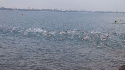 Swimmers brave Fannie Bay for race after crocodile sighting