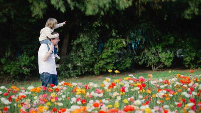 <strong>Floriade for families</strong>