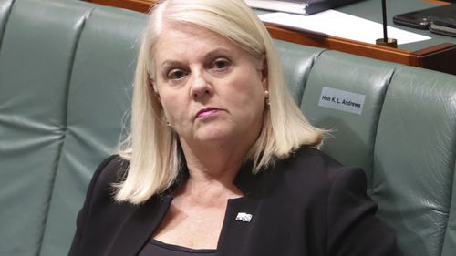 Home Affairs Minister Karen Andrews has condemned the actions of Katie Hopkins.