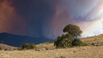 Views of the Orroral Valley fire in Namadgi National Park, south of Canberra.