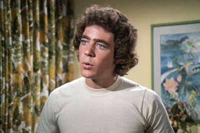 Barry Williams (Greg Brady)