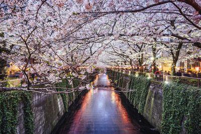 10. Tokyo, Japan