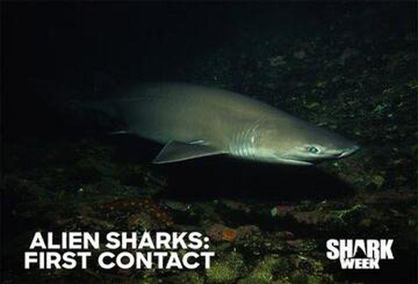 Alien Sharks: First Contact