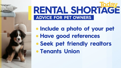 Advice for pet owners amid rental shortages.