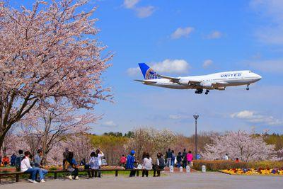 <strong>Narita Airport</strong>