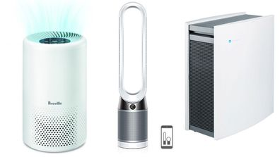 Everything you need to know about buying an air purifier