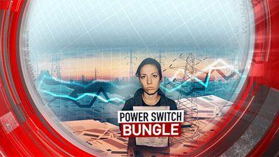 Power switch bungle