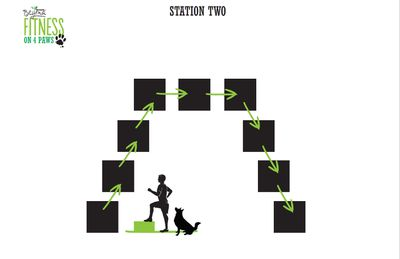 <strong>Station Two: Step-ups (4 minutes)</strong>