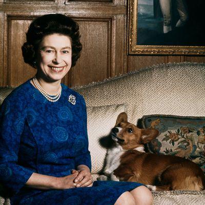 Whisper, the Queen's last corgi, has died
