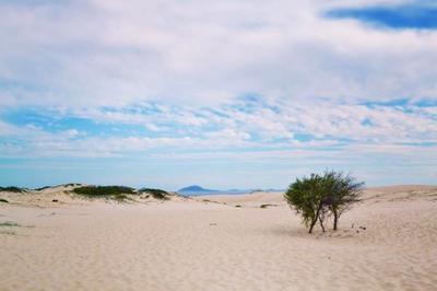 Mungo Beach, NSW