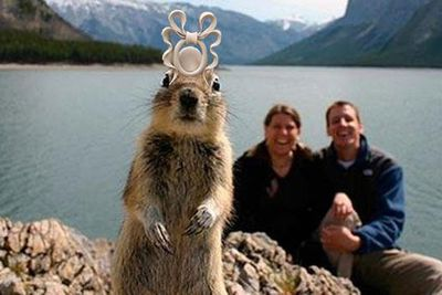 """The royal cousin's crazy hat goes viral!<p></p><br/>Pics via <a href=""""http://www.facebook.com/photo.php?fbid=10150285996512388&set=o.203705509669392&type=1&theater#!/pages/Princess-Beatrices-ridiculous-Royal-Wedding-hat/203705509669392"""" target=""""new"""">Facebook</a>"""