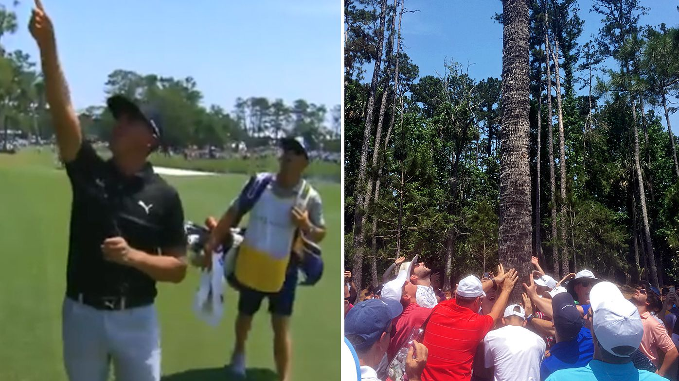 The Players Championship: Rickie Fowler gets ball stuck in tree, Webb Simpson holds four-shot lead