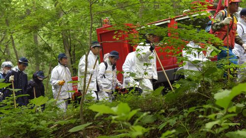 Japanese boy missing in bear-inhabited woods after his parents abandoned him as punishment