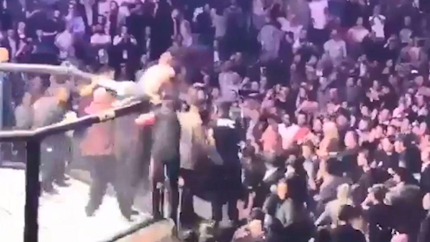 UFC 229 brawl