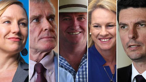 Deputy Prime Minister Barnaby Joyce and four other senators were disqualified last week.