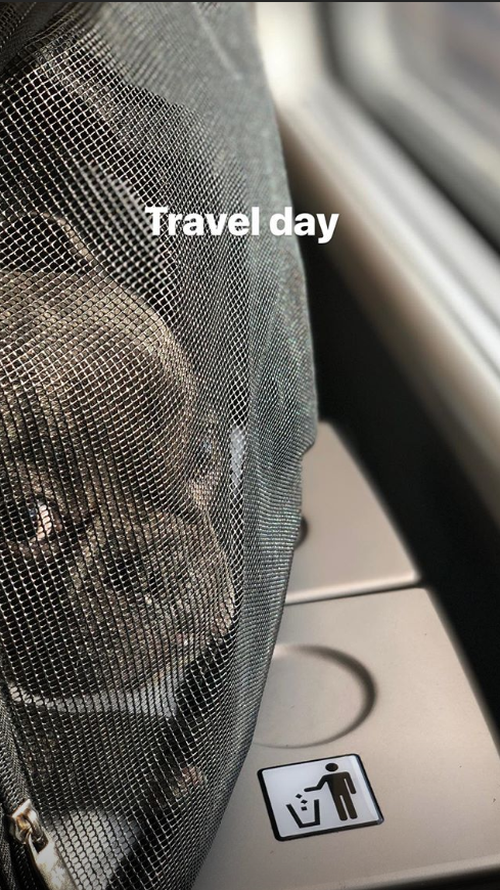 Patterson's Instagram account is chock full of pictures of gorgeous French bulldog Kobe.