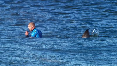 Fanning was competing in the final of the J-Bay Open when the shark, estimated to be at least three metres in length, approached him from behind.