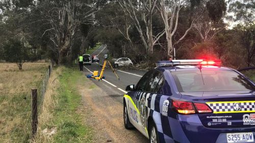 A 42-year-old died this morning when his car hit a tree. Image: 9News