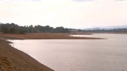 Authorities are hoping to avoid the need for water restrictions. (9NEWS)