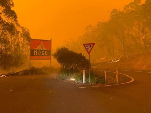 Mogo Zoo saved from NSW bushfire - RN Breakfast
