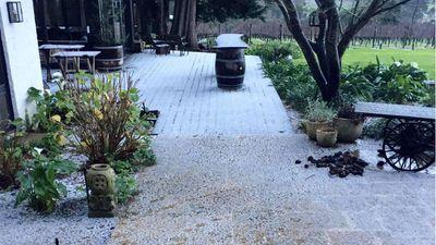 A layer of snow covered the deck at the Panton Vineyard at Mornington Peninsula this morning. (Karen Panton)