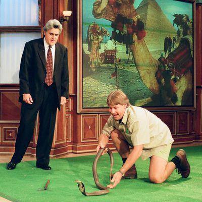 Steve Irwin: 1999