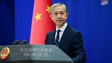 Foreign Ministry Spokesperson Wang Wenbin.