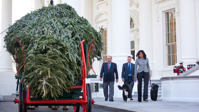 The lighting of an official White House Christmas tree was started by US President Calvin Coolidge in 1923. (AAP)