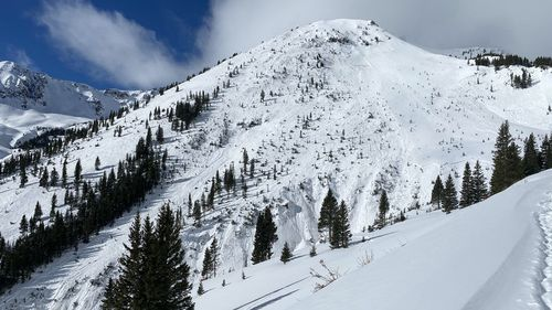 Three backcountry skiers missing after large avalanche in US
