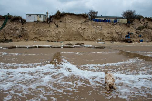 A dog runs along Hemsby beach in front of two houses that have been evacuated after high winds and waves eroded the dunes on which they sit on March 18, 2018 in Norfolk, England. Ten sea front properties have been evacuated after severe weather rapidly eroded the cliff edges in the village of Hemsby. (Photo by Chris J Ratcliffe/Getty Images)