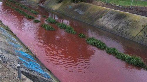 Melbourne waterway runs blood red, EPA works to establish contaminant