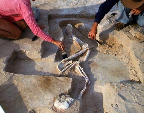 Mungo Man home to original resting place
