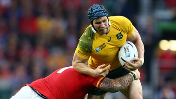 Star flanker David Pocock is in doubt for the Wallabies quarter-final. (Getty)