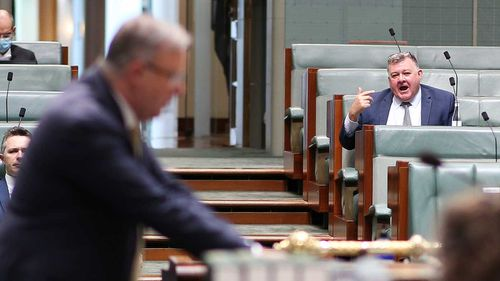 Craig Kelly heckles Anthony Albanese in Parliament last year.