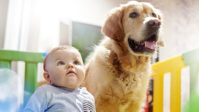 Puppy power: How dogs boost your health at every stage of