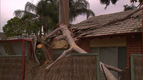 The Ashbrook Avenue home has sustained significant damage. (9NEWS)