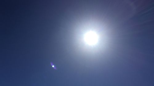 The sun is blazing at just 10am in Sydney. (Picture: Josie MacRae)