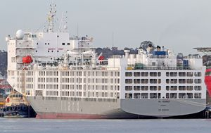Test results due today for crew of coronavirus-riddled sheep export ship