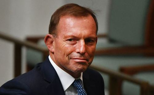 Labe headbutted Tony Abbott near the Hobart waterfront last year. (AAP)