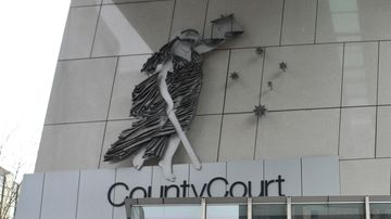 Domestic violence victim sues attacker for compensation