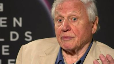 Attenborough reveals incredible world-first footage filmed in Australia