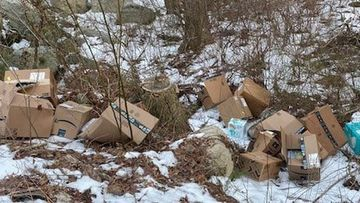 Police discovered dozens of Amazon packages in the woods in Plympton, Massachusetts.