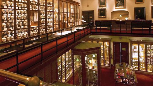 The Mutter Museum is known for its collection of human body parts. (Mutter Museum)