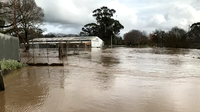 Traralgon flooded when the local creek burst its banks.