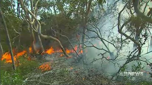 South Australian fire authorities are urging residents to start preparing for the coming bushfire season, amid dangerous weather conditions.