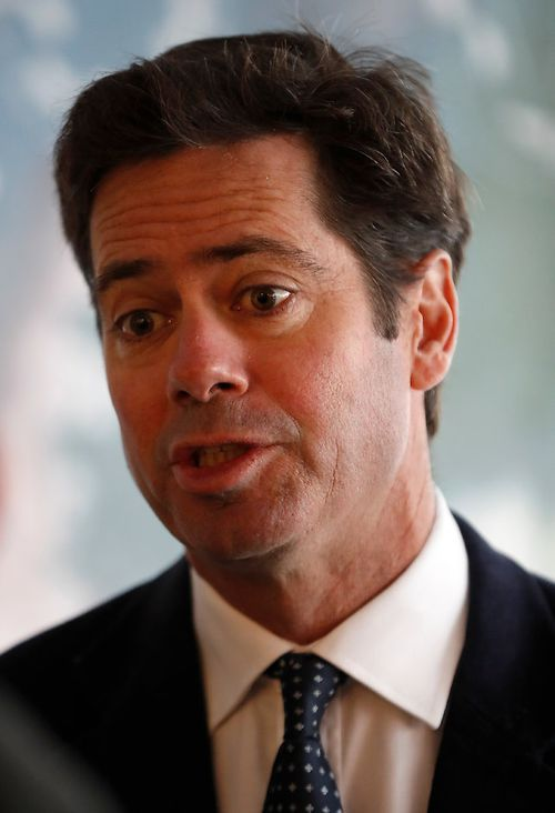 Mr Dutton apparently intervened to stop a French au pair being deported after his office was lobbied by AFL boss Gillon McLachlan. (AFL)