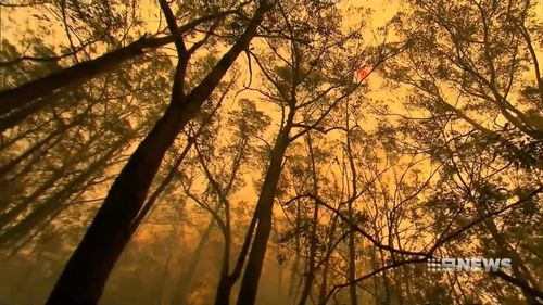 Smoke creates difficult conditions for crews battling the Wattlecreek fire in NSW.