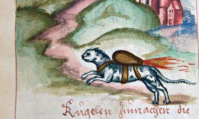 16th century rocket cats